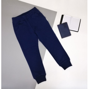 Штаны ШТ-318 синий без принта, двухнитка